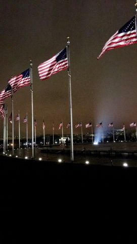 Flags at the Washington Monument   Photo: Annie Hayes
